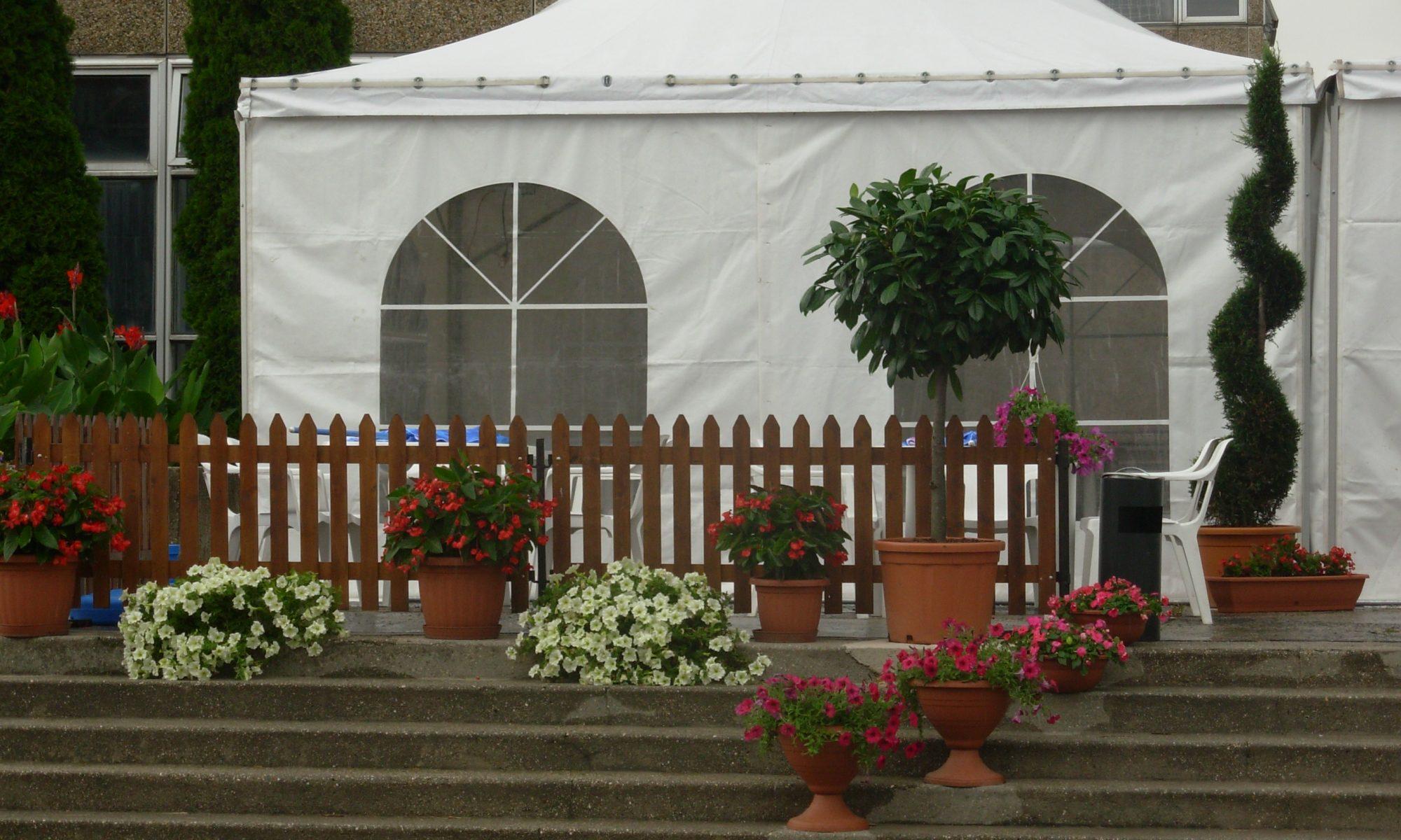 Sarkadi és Társa Kertészet